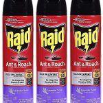 Raid Insecticida Spray - Donde comprar On line