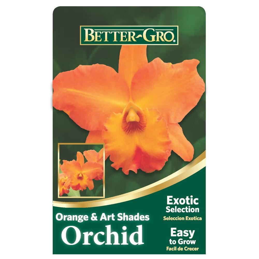 Shower Flower Orange -  Mejor selección en Linea 2
